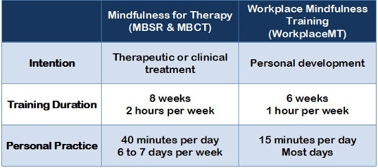 Workplace MT Online Mindfulness Training